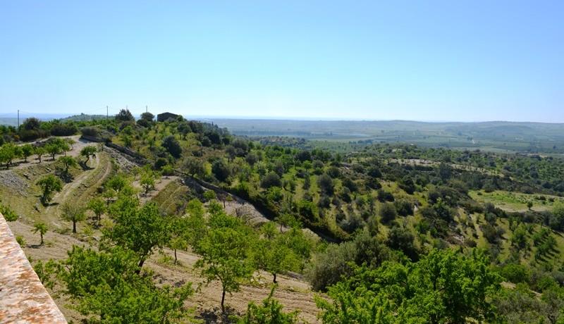 A-Noto-in-contrada-saccollino-terreno-con-vista-mare-paesaggio-4