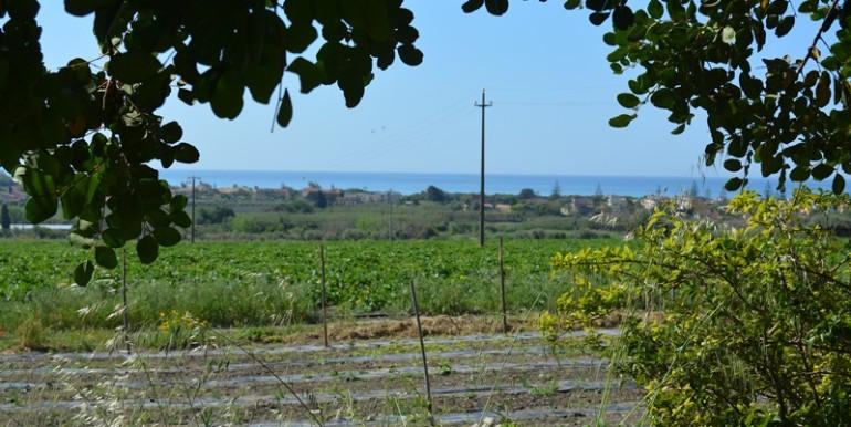 agriturismo-nel-ragusano-produzione-agricola