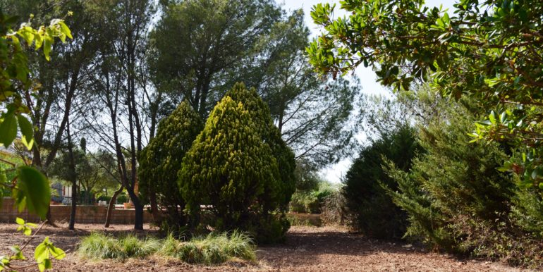 Villa in vendita ad Avola Antica giardino 3