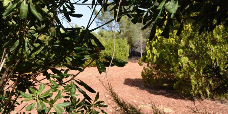 Villa in vendita ad Avola Antica giardino 5